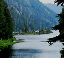 ONE OF MANY ISLANDS IN LAKE DORTHY HIGH IN THE CASCADES by Michael Beers