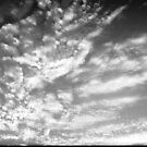 Feather Clouds by wamiqansari