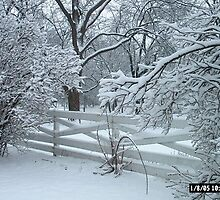 winter wonderland in Indiana by debkauble