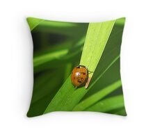 ~ I Think I Can ..... ~ Throw Pillow