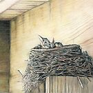 New Life Under My Deck by Charlotte Yealey
