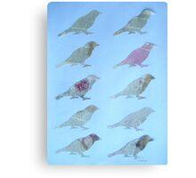 Wordy Birdies Canvas Print