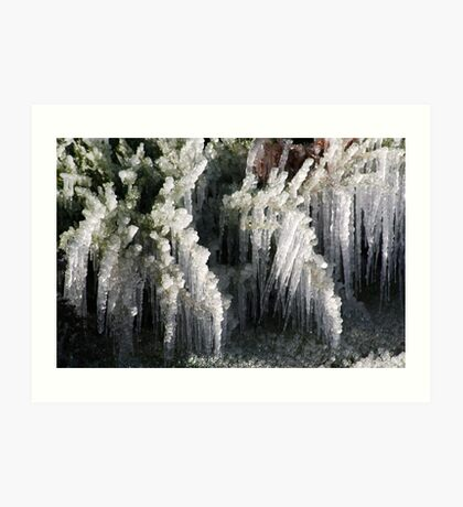 Sprinklers and Freezing Temps Art Print