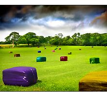 Multicolored Bales Fantasy by Mal Bray