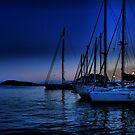 Skiathos Harbour at night  by larry flewers