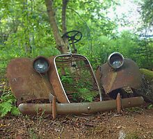 Found in the Woods by kenmo
