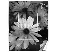 b&w flower with the 1975 llogo Poster