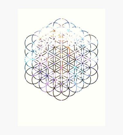 Carina Flower of Life | Sacred Geometry Art Print