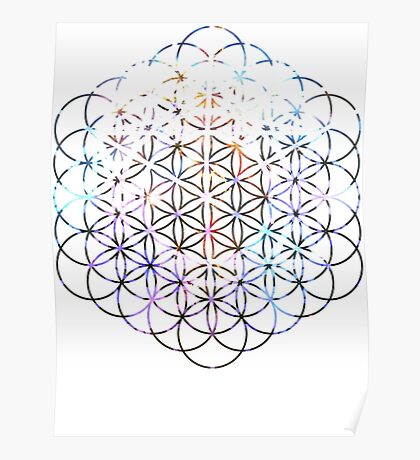 Carina Flower of Life   Sacred Geometry Poster
