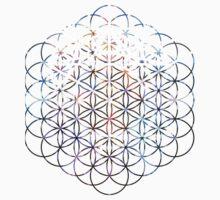 Carina Flower of Life | Sacred Geometry by SirDouglasFresh