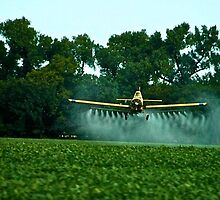 A crop duster in Kansas by Ann Reece