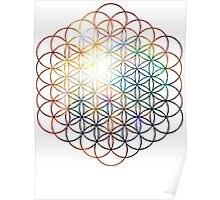 Heart of Orion Flower of Life   Sacred Geometry Poster