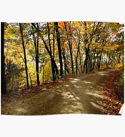 Autumn Shady Lane Poster