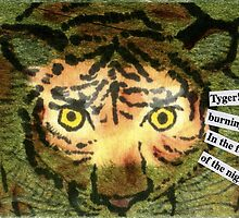 Tyger! Tyger! by dosankodebbie