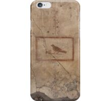 Uccellino iPhone Case/Skin