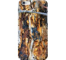 Restricted wood iPhone Case/Skin