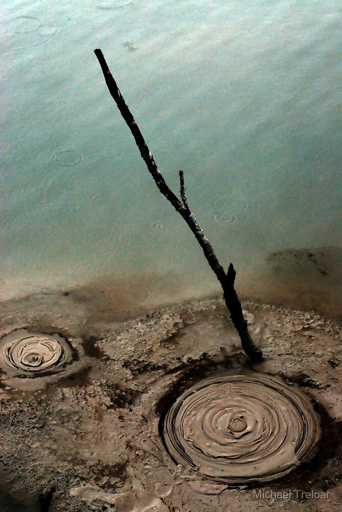 Natural Circles by Michael Treloar