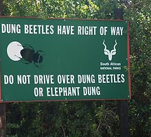 Dung Beetle Sign by rualexa