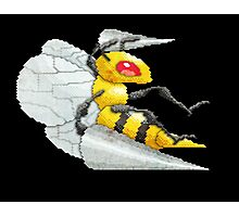 beedrill Photographic Print