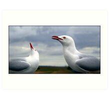 Seagulls Art Print