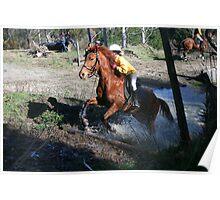 Amberley Pony Club Rally Aug-10 Poster
