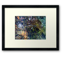©NS Fish And Leafs IVA Framed Print
