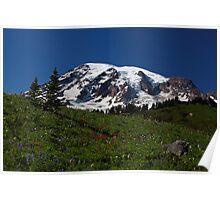 Alpine Flowers. Mount Rainier Poster
