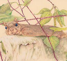 Charlie the Squirrel by lisamariestudio