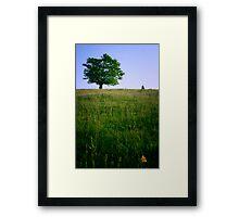 Border tree Framed Print