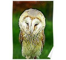 Fractalius Barn Owl Poster
