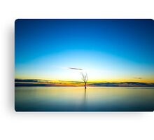 Desolate Sunrise Canvas Print