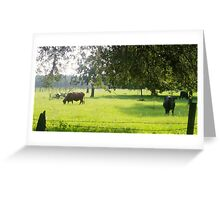 Till the cows come  home Greeting Card