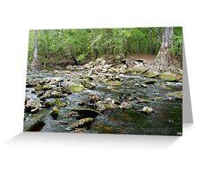 Creek deep in the woods Greeting Card