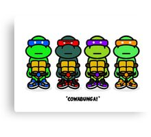 TMNT (Stickers) Canvas Print