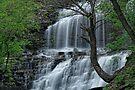 Falls along Cascadilla Gorge by Stephen Beattie