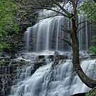 Falls along Cascadilla Gorge by Stephen Beattie