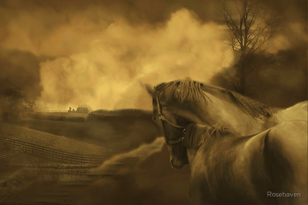 """""""Living a Dream..."""" by Rosehaven"""