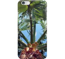 Under the Palms iPhone Case/Skin