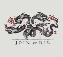 Join, or Die by narwen