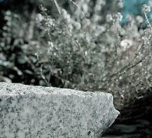 Granite by OlurProd