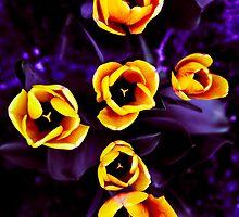 Yellow cross I by OlurProd