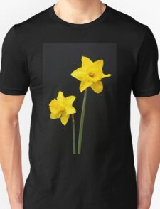 Daffodils in full bloom Unisex T-Shirt