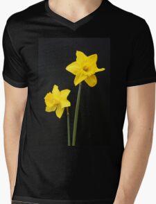 Daffodils in full bloom Mens V-Neck T-Shirt