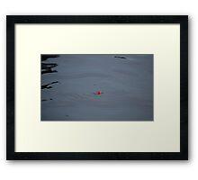 The Bobber Framed Print