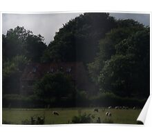 cottage amongst trees  Poster
