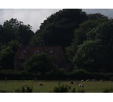 cottage amongst trees  Photographic Print
