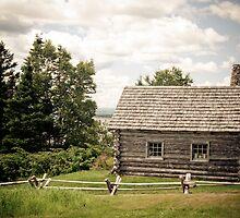 Homestead by Shane Shaw