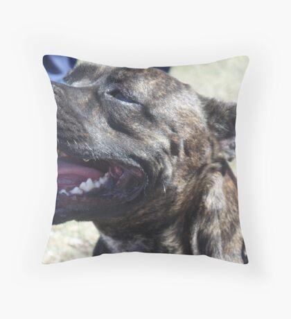 staffordshire bull terrier head Throw Pillow