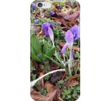 Spring Flowers and May Showers iPhone Case/Skin