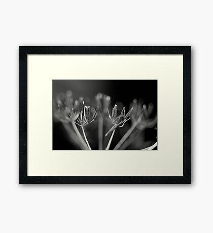 black depth Framed Print